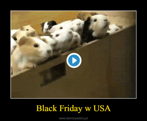 Black Friday w USA –