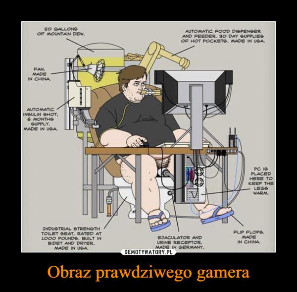 Obraz prawdziwego gamera –