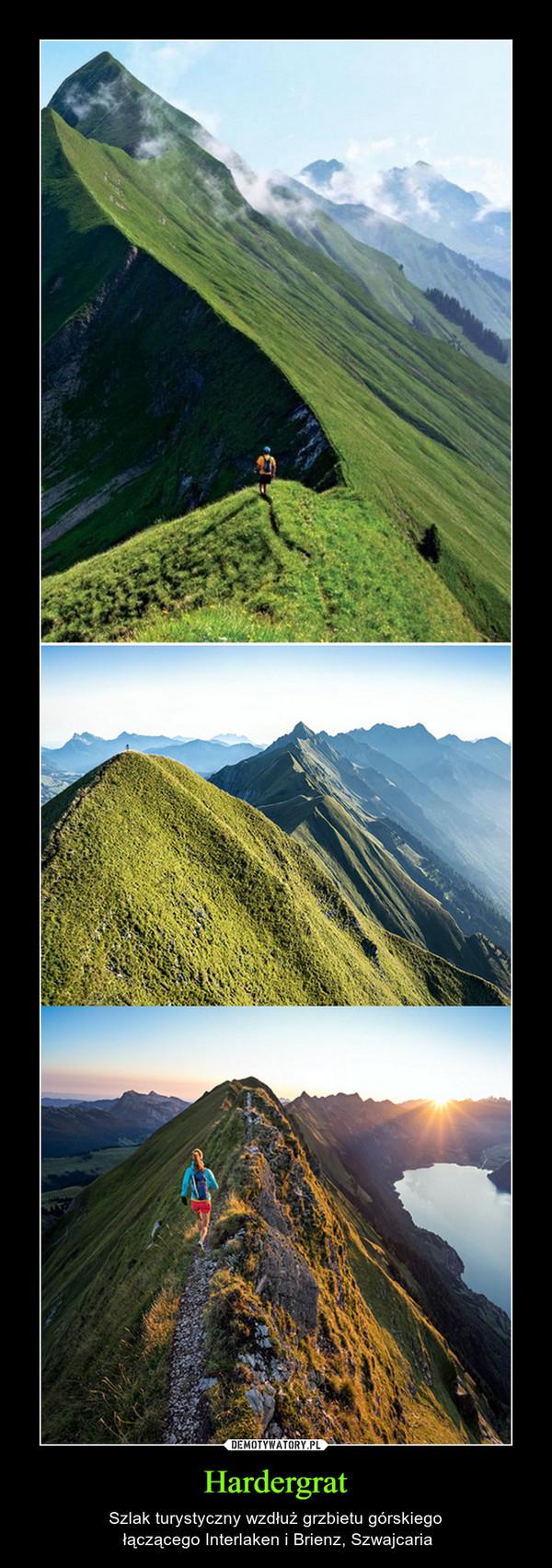 Hardergrat – Szlak turystyczny wzdłuż grzbietu górskiego łączącego Interlaken i Brienz, Szwajcaria