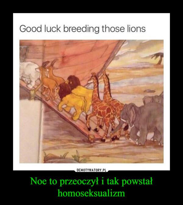 Noe to przeoczył i tak powstał homoseksualizm –