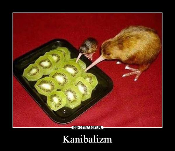 Kanibalizm –