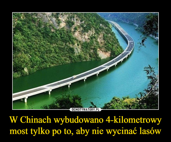 W Chinach wybudowano 4-kilometrowy most tylko po to, aby nie wycinać lasów –