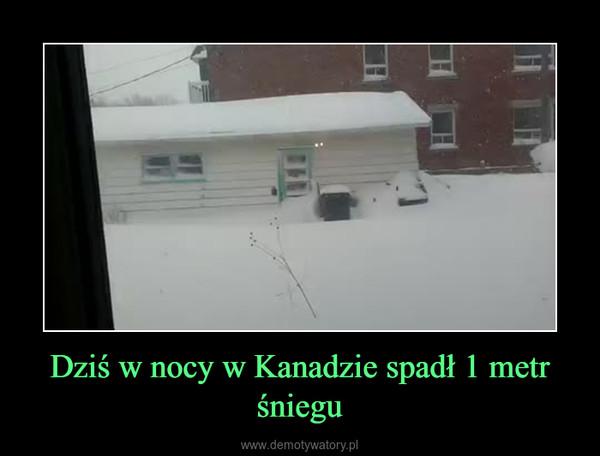 Dziś w nocy w Kanadzie spadł 1 metr śniegu –