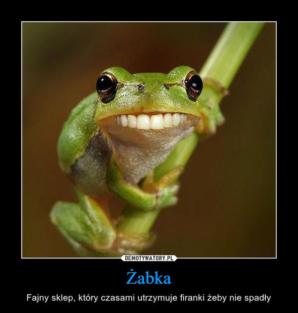 Żabka – Fajny sklep, który czasami utrzymuje firanki żeby nie spadły