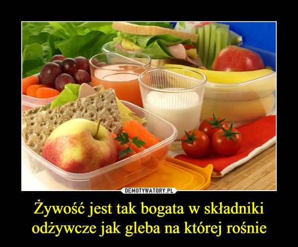 Żywość jest tak bogata w składniki odżywcze jak gleba na której rośnie –