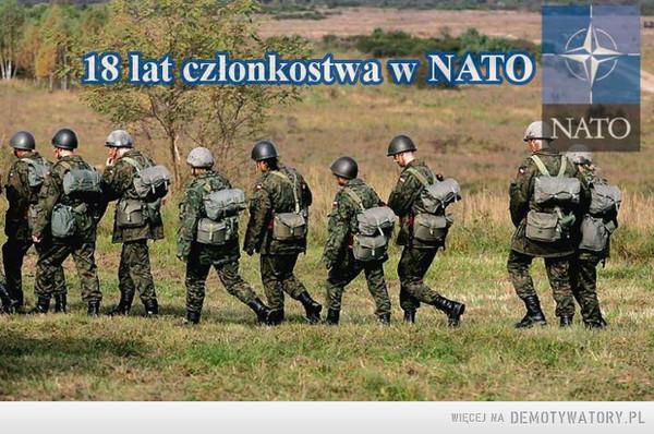 Dumni z 18 lat w NATO –