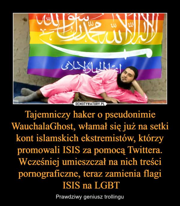 Tajemniczy haker o pseudonimie WauchalaGhost, włamał się już na setki kont islamskich ekstremistów, którzy promowali ISIS za pomocą Twittera. Wcześniej umieszczał na nich treści pornograficzne, teraz zamienia flagi ISIS na LGBT – Prawdziwy geniusz trollingu
