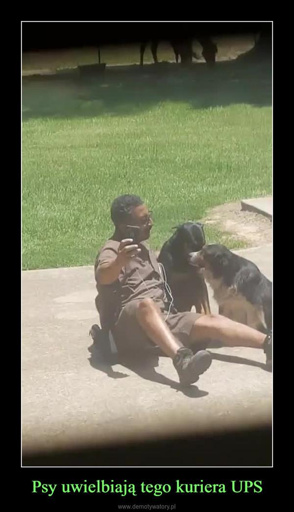 Psy uwielbiają tego kuriera UPS –