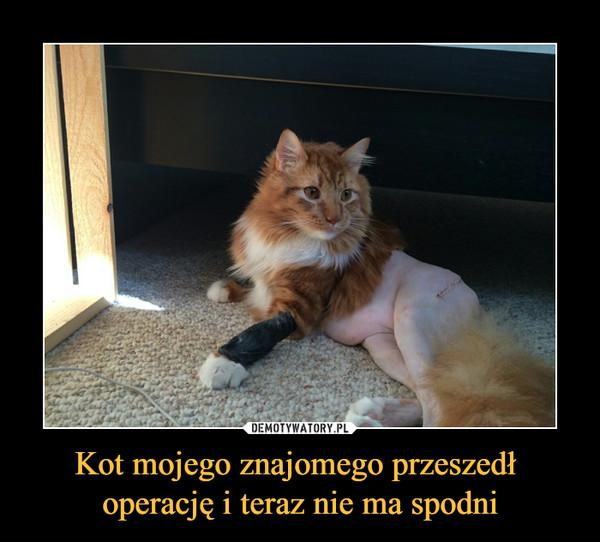 Kot mojego znajomego przeszedł operację i teraz nie ma spodni –