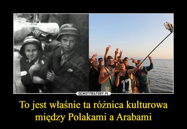 To jest właśnie ta różnica kulturowa między Polakami a Arabami –