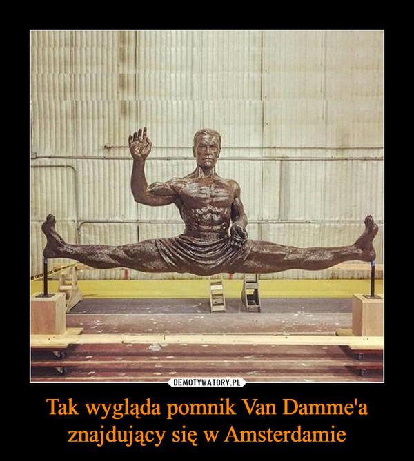 Tak wygląda pomnik Van Damme'a znajdujący się w Amsterdamie –
