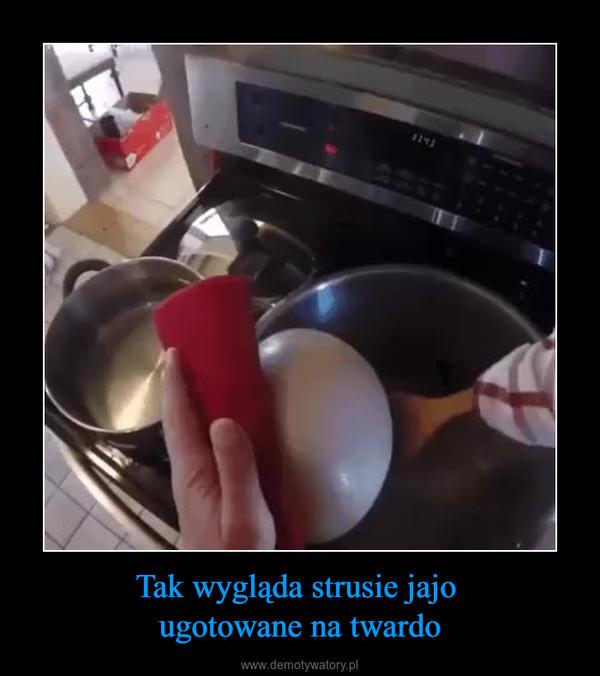 Tak wygląda strusie jajo ugotowane na twardo –