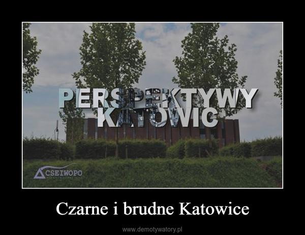 Czarne i brudne Katowice –