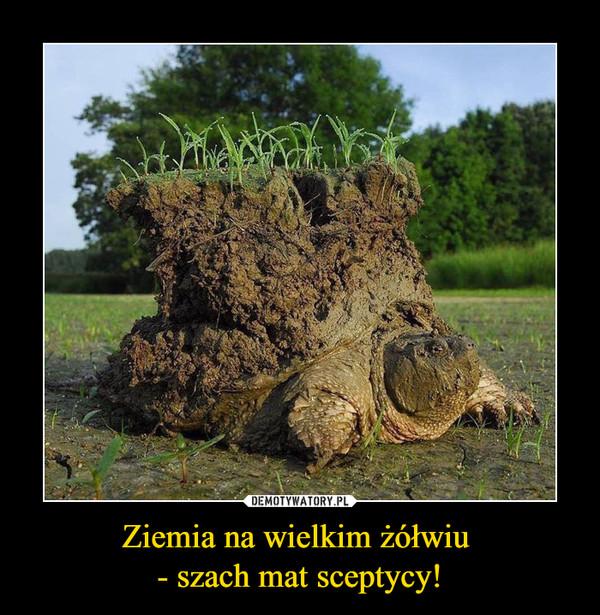 Ziemia na wielkim żółwiu - szach mat sceptycy! –