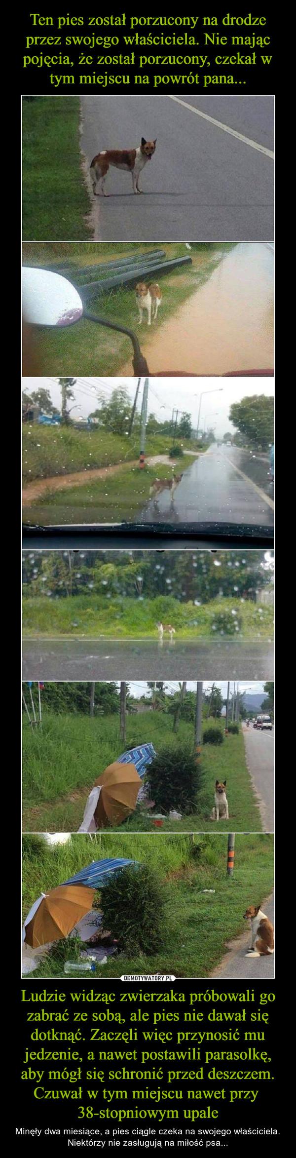 Ludzie widząc zwierzaka próbowali go zabrać ze sobą, ale pies nie dawał się dotknąć. Zaczęli więc przynosić mu jedzenie, a nawet postawili parasolkę, aby mógł się schronić przed deszczem. Czuwał w tym miejscu nawet przy 38-stopniowym upale – Minęły dwa miesiące, a pies ciągle czeka na swojego właściciela. Niektórzy nie zasługują na miłość psa...