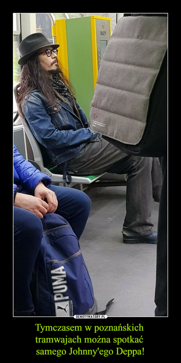 Tymczasem w poznańskich tramwajach można spotkać samego Johnny'ego Deppa! –