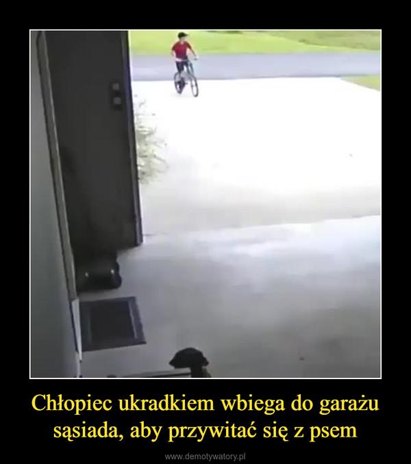 Chłopiec ukradkiem wbiega do garażu sąsiada, aby przywitać się z psem –