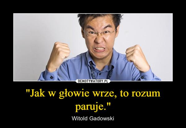 """""""Jak w głowie wrze, to rozum paruje."""" – Witold Gadowski"""