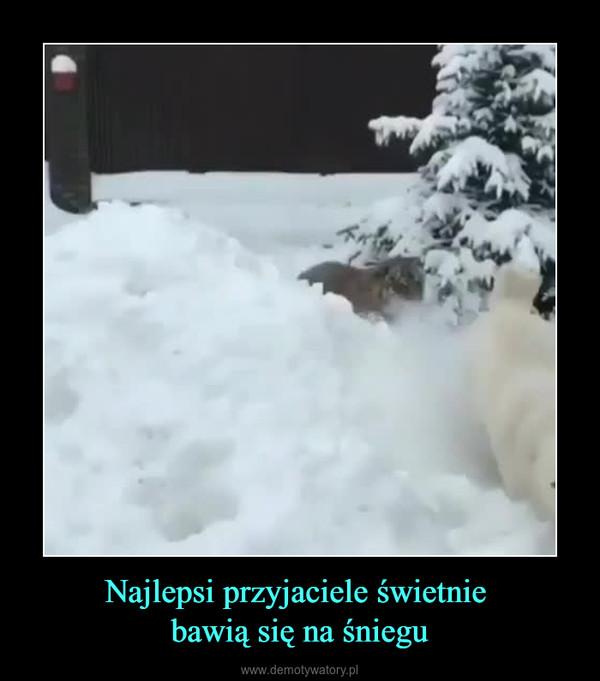 Najlepsi przyjaciele świetnie bawią się na śniegu –