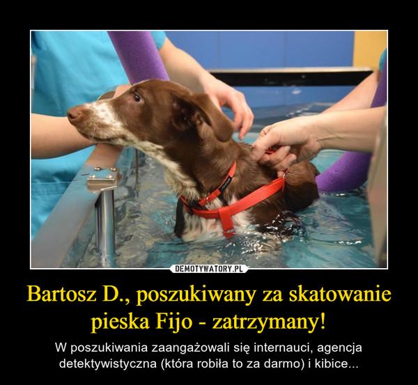 Bartosz D., poszukiwany za skatowanie pieska Fijo - zatrzymany! – W poszukiwania zaangażowali się internauci, agencja detektywistyczna (która robiła to za darmo) i kibice...