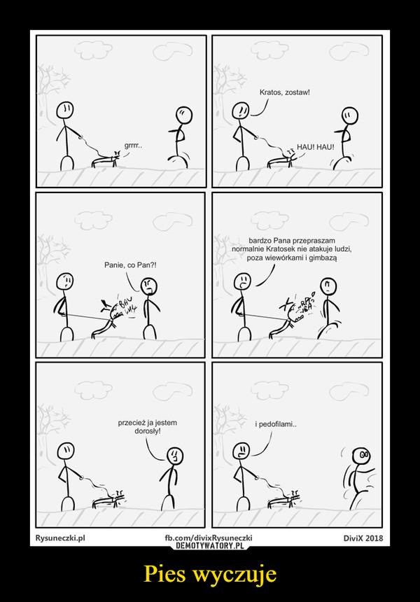 Pies wyczuje –