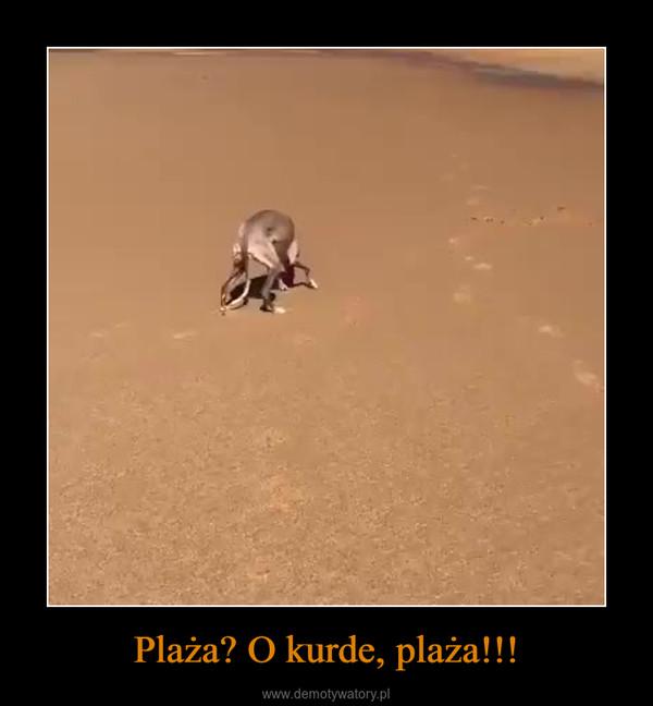 Plaża? O kurde, plaża!!! –