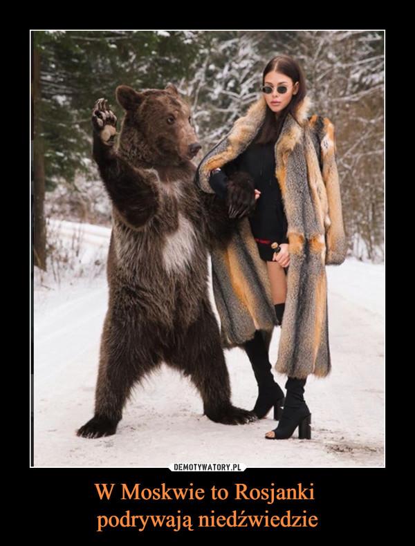 W Moskwie to Rosjanki podrywają niedźwiedzie –