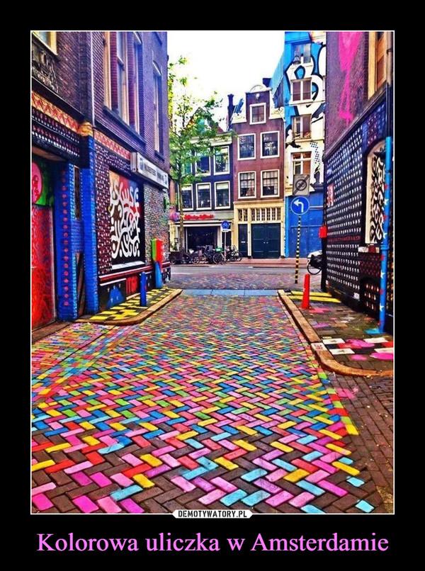 Kolorowa uliczka w Amsterdamie –