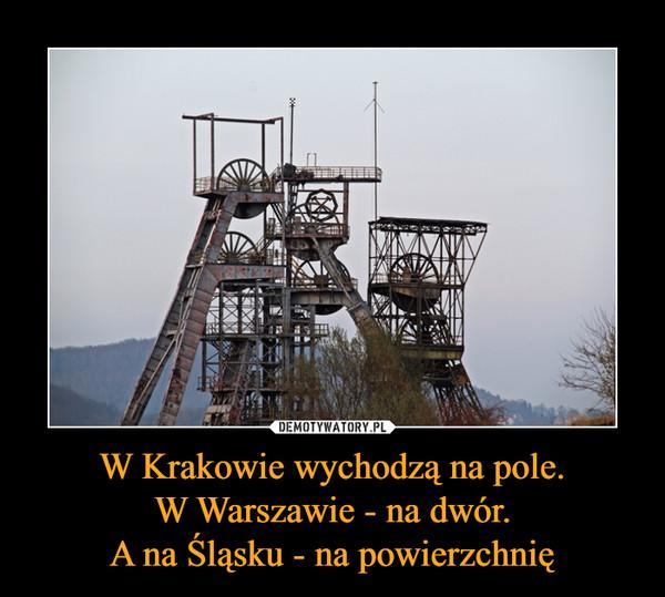 W Krakowie wychodzą na pole.W Warszawie - na dwór.A na Śląsku - na powierzchnię –