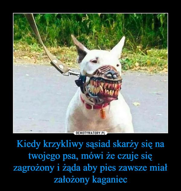 Kiedy krzykliwy sąsiad skarży się na twojego psa, mówi że czuje się zagrożony i żąda aby pies zawsze miał założony kaganiec –