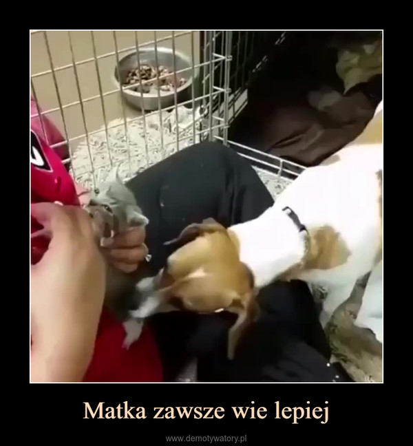 Matka zawsze wie lepiej –