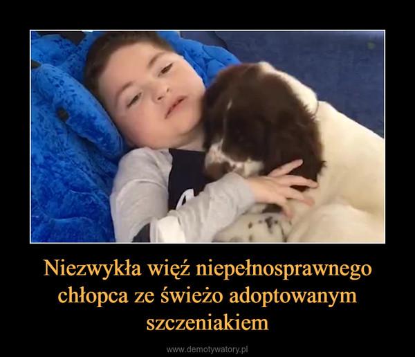 Niezwykła więź niepełnosprawnego chłopca ze świeżo adoptowanym szczeniakiem –