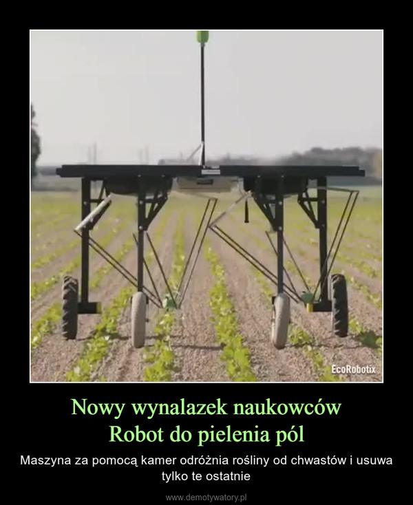 Nowy wynalazek naukowcówRobot do pielenia pól – Maszyna za pomocą kamer odróżnia rośliny od chwastów i usuwa tylko te ostatnie