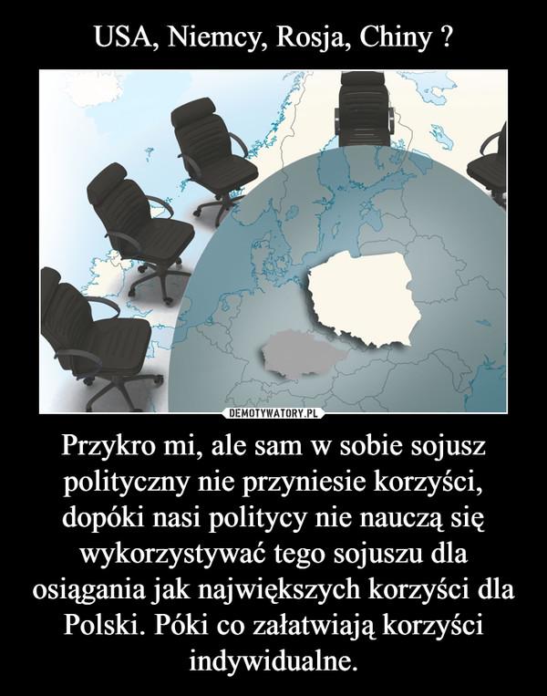 Przykro mi, ale sam w sobie sojusz polityczny nie przyniesie korzyści, dopóki nasi politycy nie nauczą się wykorzystywać tego sojuszu dla osiągania jak największych korzyści dla Polski. Póki co załatwiają korzyści indywidualne. –