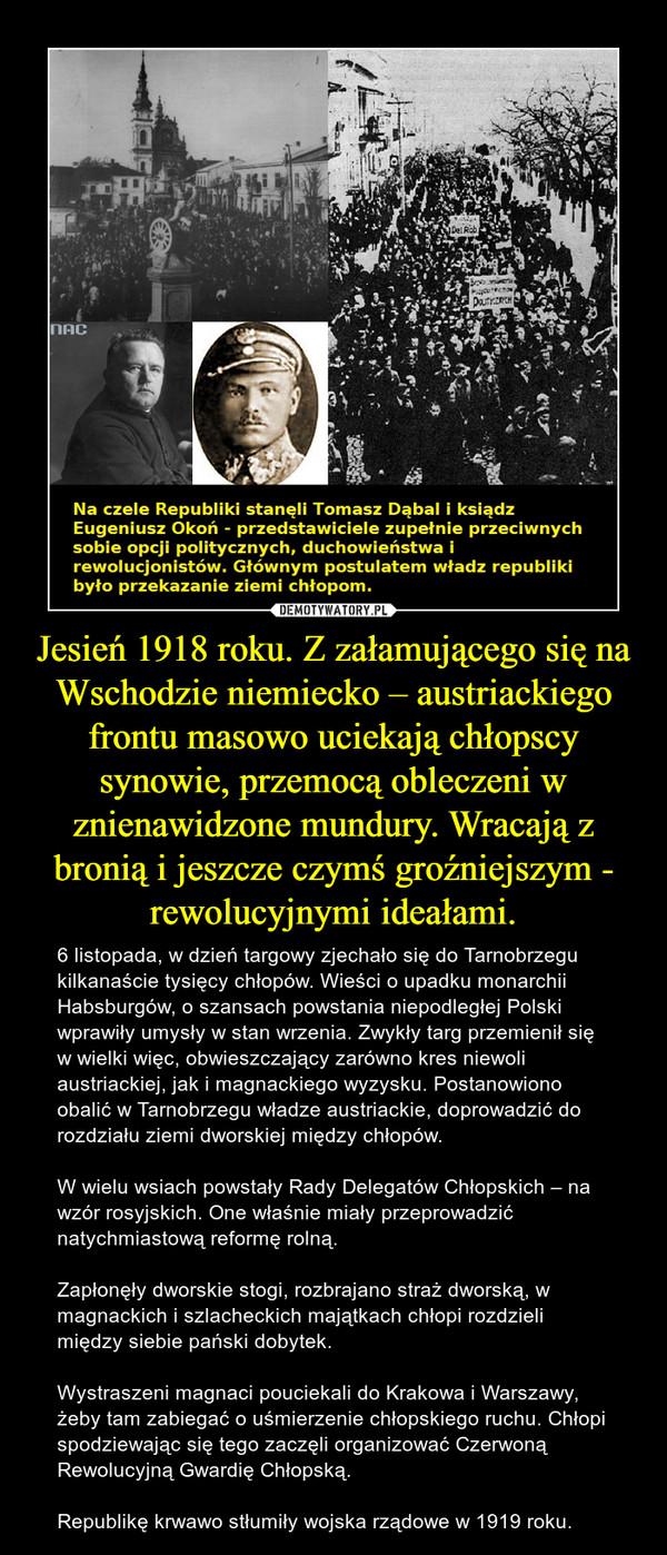 Jesień 1918 roku. Z załamującego się na Wschodzie niemiecko – austriackiego frontu masowo uciekają chłopscy synowie, przemocą obleczeni w znienawidzone mundury. Wracają z bronią i jeszcze czymś groźniejszym - rewolucyjnymi ideałami. – 6 listopada, w dzień targowy zjechało się do Tarnobrzegu kilkanaście tysięcy chłopów. Wieści o upadku monarchii Habsburgów, o szansach powstania niepodległej Polski wprawiły umysły w stan wrzenia. Zwykły targ przemienił się w wielki więc, obwieszczający zarówno kres niewoli austriackiej, jak i magnackiego wyzysku. Postanowiono obalić w Tarnobrzegu władze austriackie, doprowadzić do rozdziału ziemi dworskiej między chłopów. W wielu wsiach powstały Rady Delegatów Chłopskich – na wzór rosyjskich. One właśnie miały przeprowadzić natychmiastową reformę rolną. Zapłonęły dworskie stogi, rozbrajano straż dworską, w magnackich i szlacheckich majątkach chłopi rozdzieli między siebie pański dobytek. Wystraszeni magnaci pouciekali do Krakowa i Warszawy, żeby tam zabiegać o uśmierzenie chłopskiego ruchu. Chłopi spodziewając się tego zaczęli organizować Czerwoną Rewolucyjną Gwardię Chłopską.Republikę krwawo stłumiły wojska rządowe w 1919 roku.
