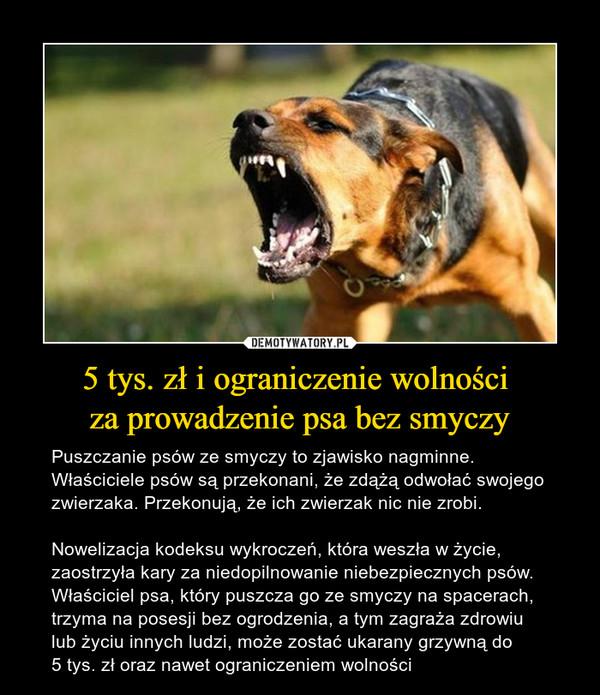 5 tys. zł i ograniczenie wolności za prowadzenie psa bez smyczy – Puszczanie psów ze smyczy to zjawisko nagminne. Właściciele psów są przekonani, że zdążą odwołać swojego zwierzaka. Przekonują, że ich zwierzak nic nie zrobi.Nowelizacja kodeksu wykroczeń, która weszła w życie, zaostrzyła kary za niedopilnowanie niebezpiecznych psów. Właściciel psa, który puszcza go ze smyczy na spacerach, trzyma na posesji bez ogrodzenia, a tym zagraża zdrowiu lub życiu innych ludzi, może zostać ukarany grzywną do 5 tys. zł oraz nawet ograniczeniem wolności