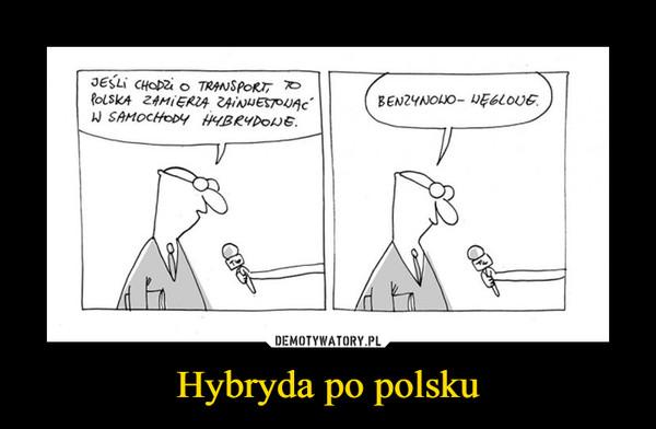 Hybryda po polsku –  Jesli chodzi o transport, to Polska zamierza zainwestować w samochody hybrydowebenzynowo-węglowe