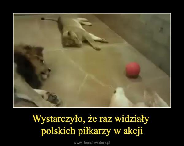Wystarczyło, że raz widziały polskich piłkarzy w akcji –