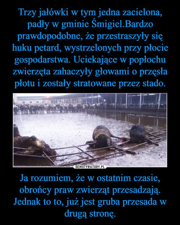 Ja rozumiem, że w ostatnim czasie, obrońcy praw zwierząt przesadzają. Jednak to to, już jest gruba przesada w drugą stronę. –