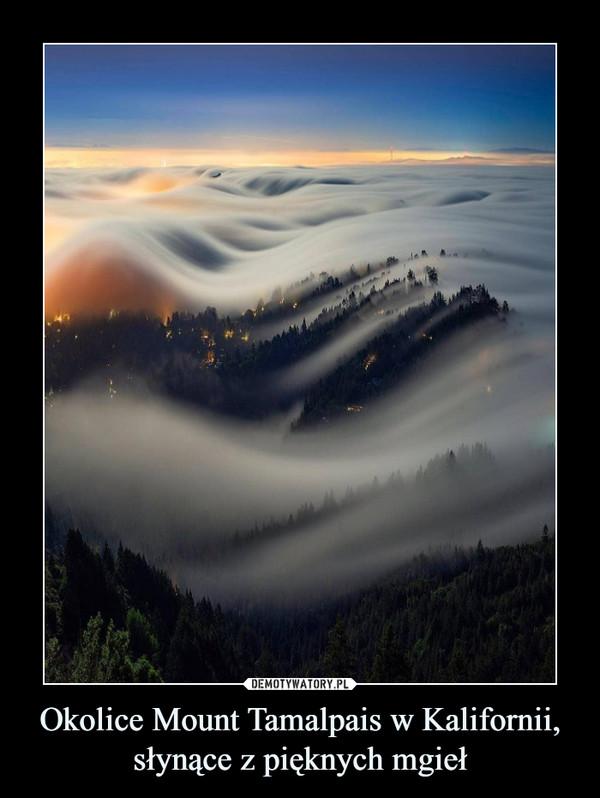Okolice Mount Tamalpais w Kalifornii, słynące z pięknych mgieł –