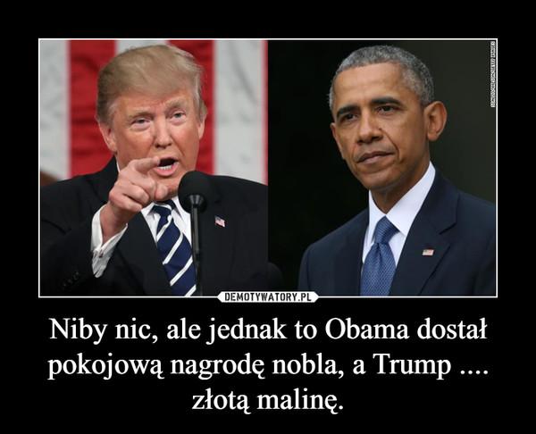 Niby nic, ale jednak to Obama dostał pokojową nagrodę nobla, a Trump .... złotą malinę. –