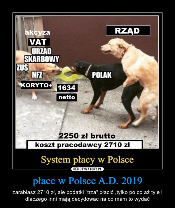 """płace w Polsce A.D. 2019 – zarabiasz 2710 zł, ale podatki """"trza"""" płacić ,tylko po co aż tyle i dlaczego inni mają decydowac na co mam to wydać"""