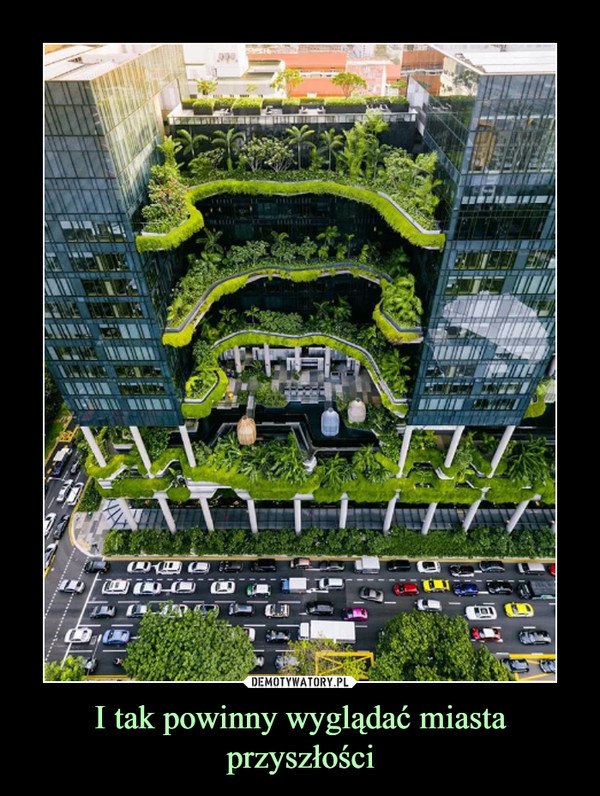 I tak powinny wyglądać miasta przyszłości –