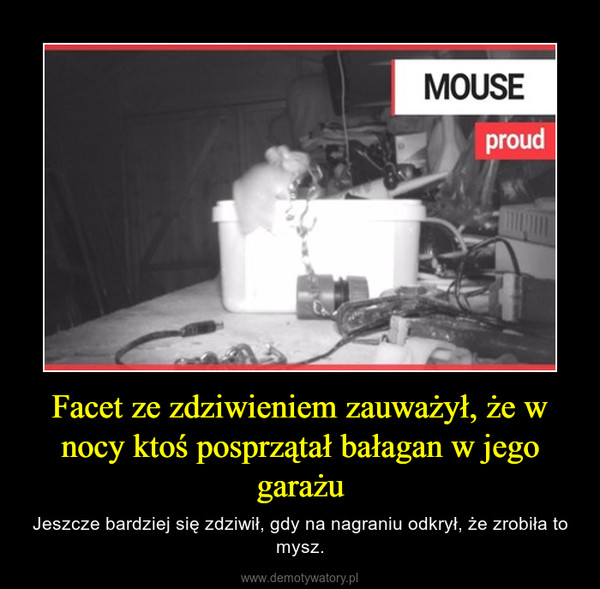 Facet ze zdziwieniem zauważył, że w nocy ktoś posprzątał bałagan w jego garażu – Jeszcze bardziej się zdziwił, gdy na nagraniu odkrył, że zrobiła to mysz.