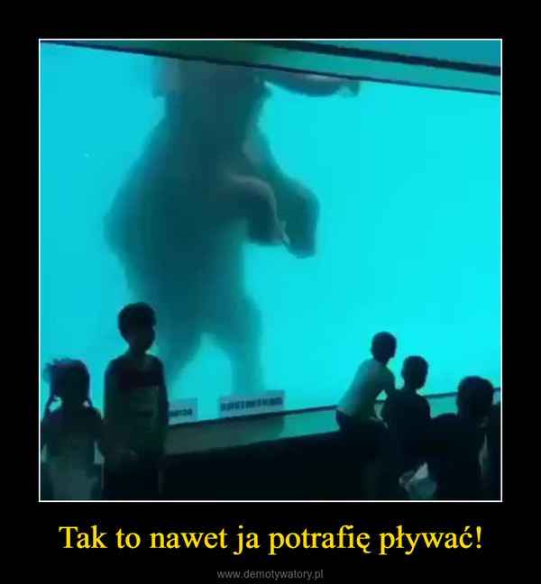 Tak to nawet ja potrafię pływać! –