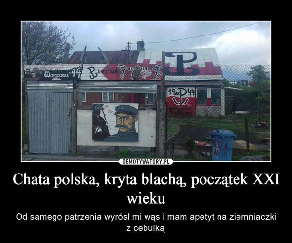 Chata polska, kryta blachą, początek XXI wieku – Od samego patrzenia wyrósł mi wąs i mam apetyt na ziemniaczki z cebulką