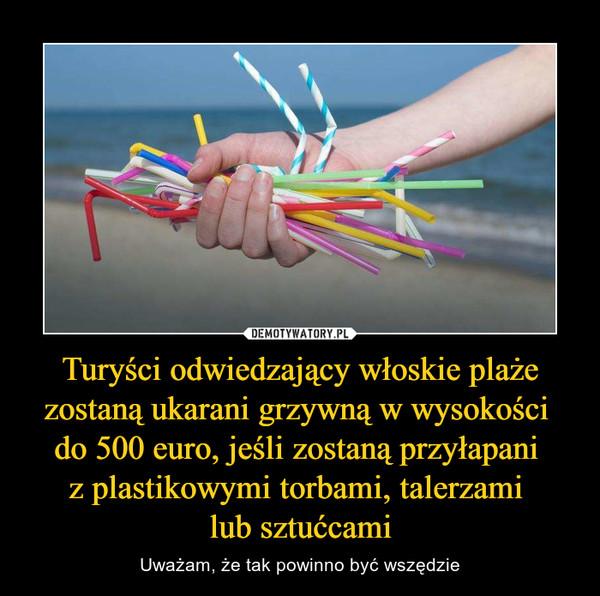 Turyści odwiedzający włoskie plaże zostaną ukarani grzywną w wysokości do 500 euro, jeśli zostaną przyłapani z plastikowymi torbami, talerzami lub sztućcami – Uważam, że tak powinno być wszędzie