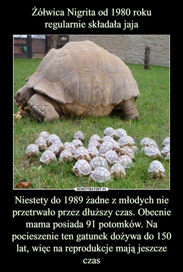 Niestety do 1989 żadne z młodych nie przetrwało przez dłuższy czas. Obecnie mama posiada 91 potomków. Na pocieszenie ten gatunek dożywa do 150 lat, więc na reprodukcje mają jeszcze czas –