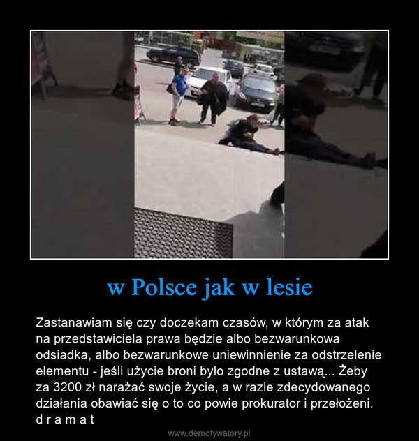w Polsce jak w lesie – Zastanawiam się czy doczekam czasów, w którym za atak na przedstawiciela prawa będzie albo bezwarunkowa odsiadka, albo bezwarunkowe uniewinnienie za odstrzelenie elementu - jeśli użycie broni było zgodne z ustawą... Żeby za 3200 zł narażać swoje życie, a w razie zdecydowanego działania obawiać się o to co powie prokurator i przełożeni. d r a m a t