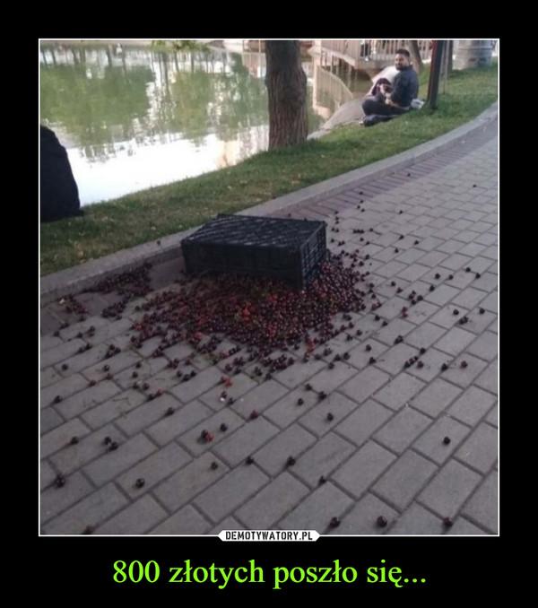 800 złotych poszło się... –